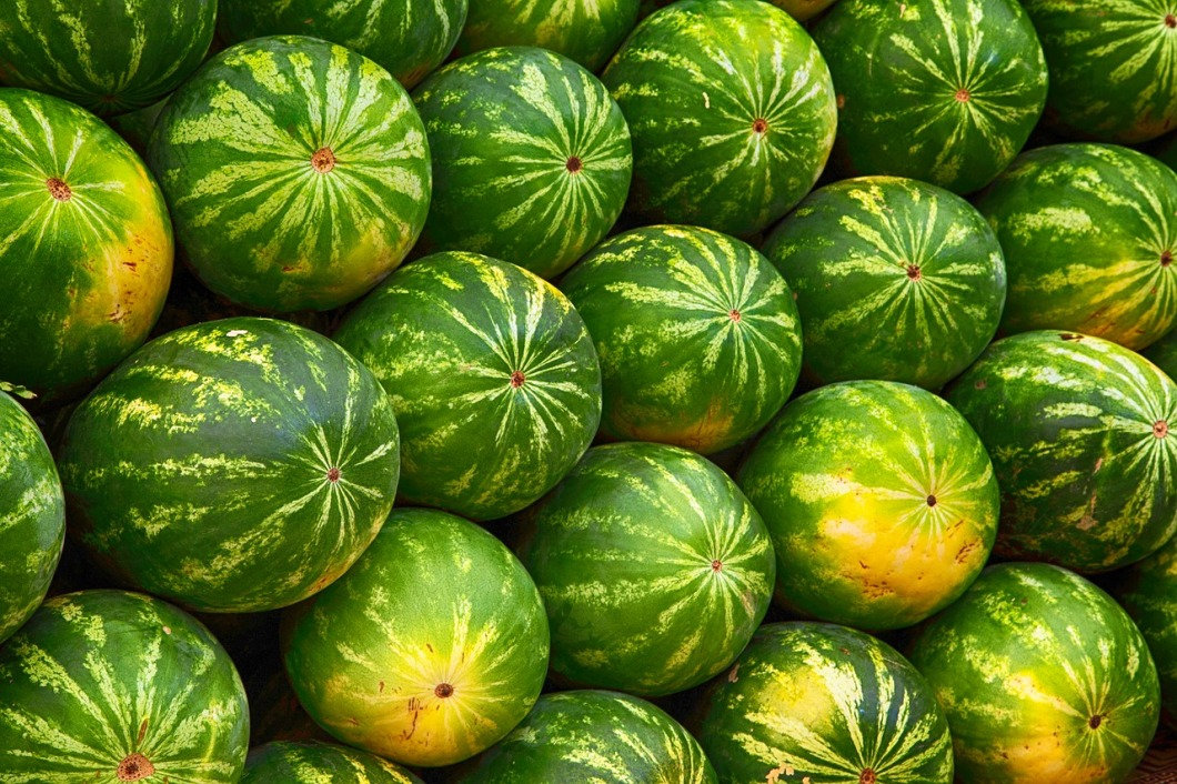 melon-2464875_1280